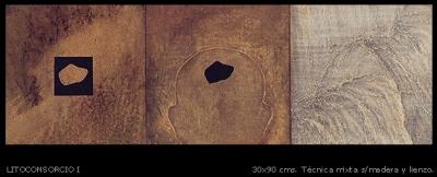 Litoconsorcio # 1. 30x90 cm.