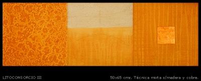 Litoconsorcio # 3. 30x90 cm.