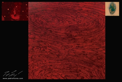 XX. Técnica mixta sobre madera, glicée sobre lienzo. 120x179 cm.