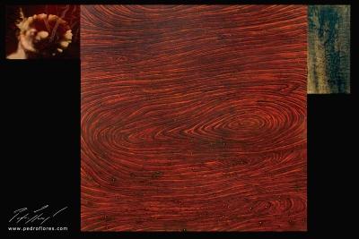 XY. Técnica mixta sobre madera, glicée sobre lienzo. 120x181 cm.