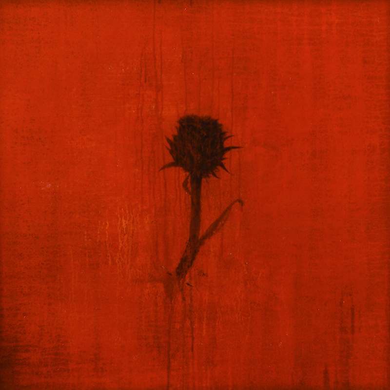 Territorio de pasión. 1996. 75x75 cm. Mixta sobre tabla.